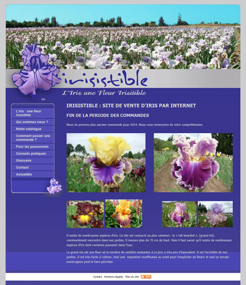 Irisistible