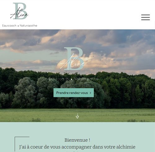 Aline Bourjalversion mobile